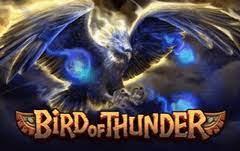 OLE98 รีวิว เกมสนุก Bird of Thunder ดุดันเล้าใจ